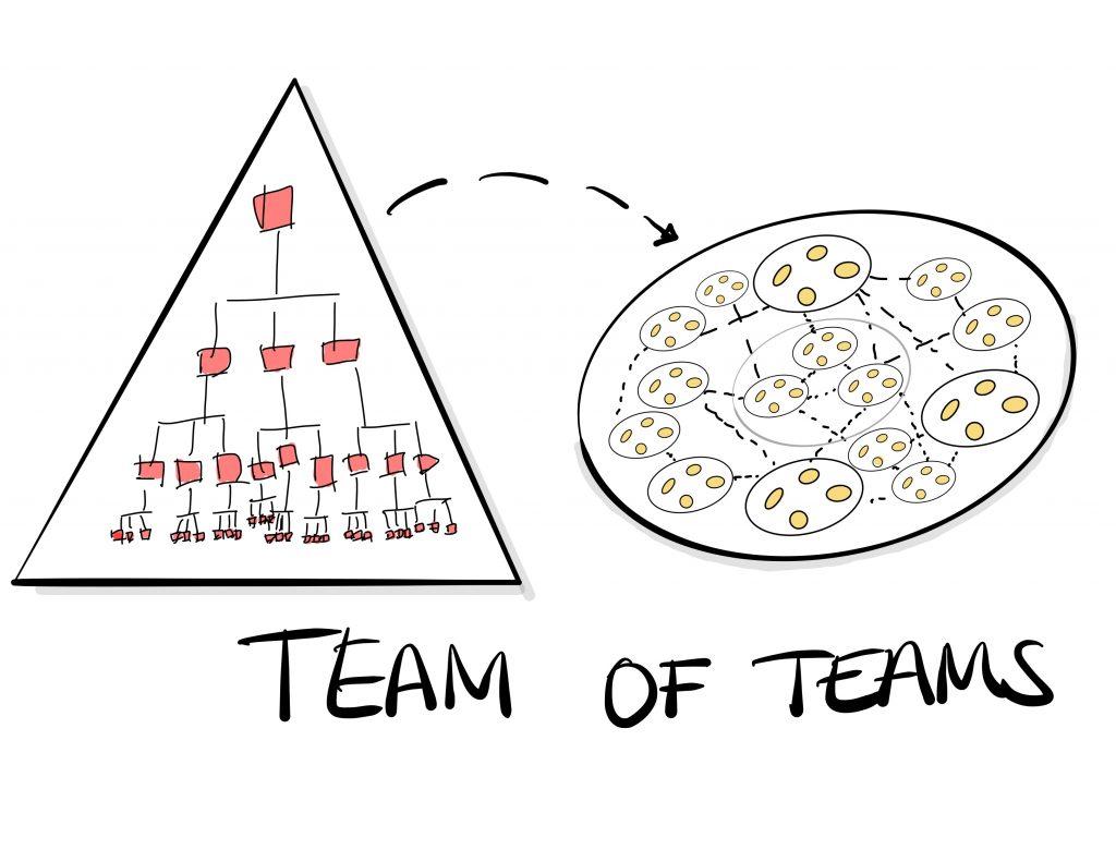 Van hierarchie naar netwerk